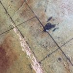 Port Melbourne Retail Shop - Textured Flooring 3
